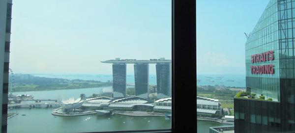 horita3 シンガポール就職希望者は必見!シンガポール就職に詳しい堀田Daniel誠人さんにインタビュー!