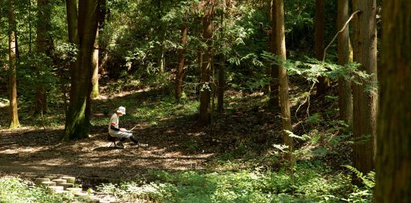 forest ただ走るのが飽きてきた?いつものランニングをより楽しく刺激的にする方法5つ!